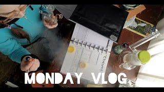 Monday Vlog | Snowstorm Prep by Jenny Wakeandbake