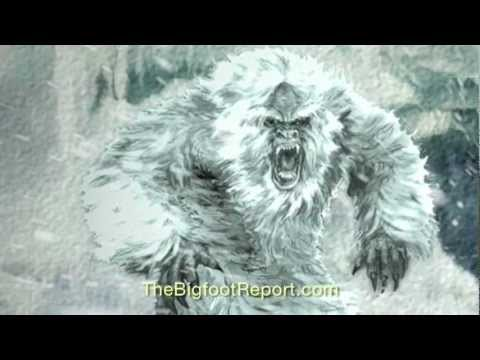 yeti - Presented by http://TheBigfootReport.com EXTINCT? - Episode 1 - The Yeti (2012) Written, directed, narrated by Ro Sahebi A case for the existence of Gigantop...