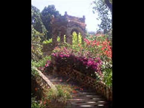 Video of B&B Rosangela
