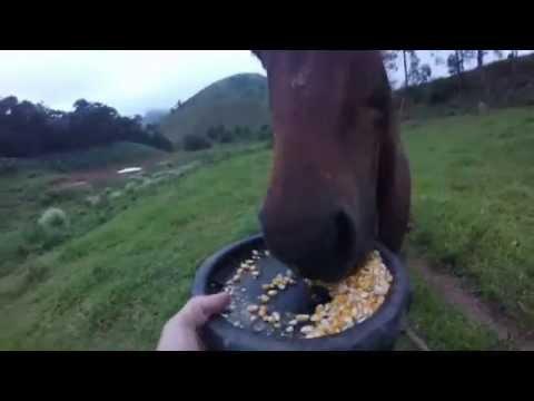 Cavalgada Santa Bárbara do Monte Verde - MG GoPro Hero3