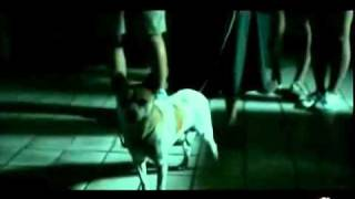 Nonton 11 09 2010     Child S Eye                            Trailers Parta Film Subtitle Indonesia Streaming Movie Download