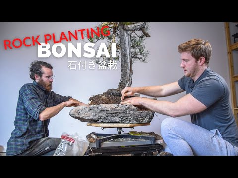 Epic Pine Bonsai Rock Planting | In the Workshop, Ep. 9