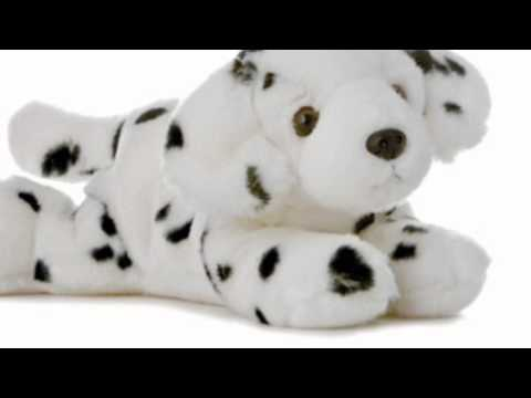 Video Latest YouTube Video of the Plush Domino Dog Flopsie