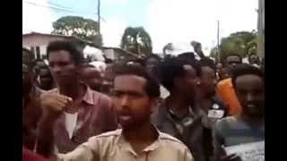 Finfinnee, Ethiopia Protests Against Gov Land Grab And Brutal Murder Of Oromo Student Protesters
