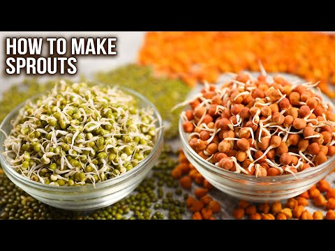How To Make Sprouts | 2 Ways of Sprouting | Sprouts Storage Ideas | Complete Sprout Guide | Ruchi