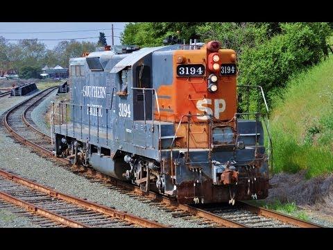 Diesel Trains Galore!