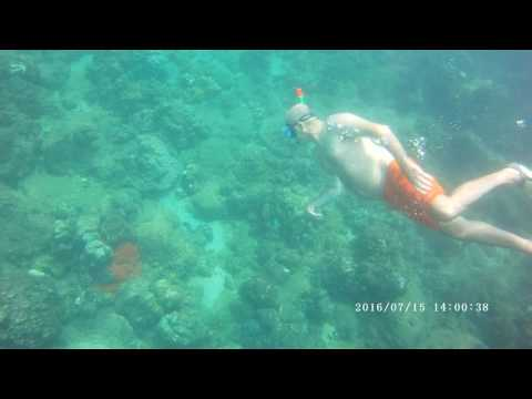 Snorkeling video Navy Island Trincomalee Sri Lanka