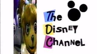Summer 1993 Disney Channel Commercial Breaks + Promos
