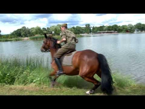 18. Piknik Kawaleryjski. Dla ułana koń jest ważniejszy niż kobieta