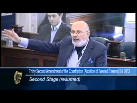 What an oration: brilliant Seanad speech on government ineptitude
