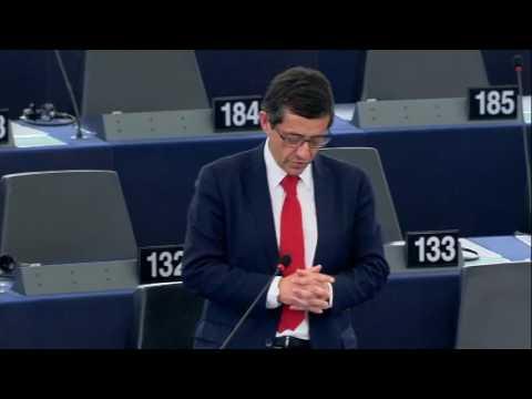Carlos Zorrinho no debate sobre óleo de palma e desflorestação das florestas tropicais