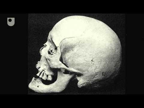 Seianti  's Skeleton - Lernen von menschlichen Überresten: Seianti ' s Skelet (3/4)