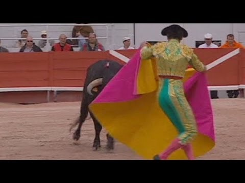 Bullfighting not banned by France Constitutional Court