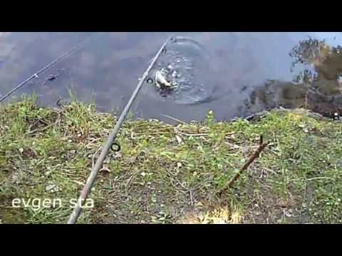 фильмы про рыбалку мыгайловыча на пенопласт новинки