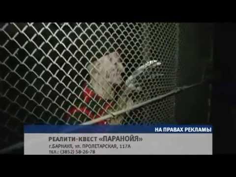 Сюжет «Паранойя и Фредди» 21.05.15 (16+)
