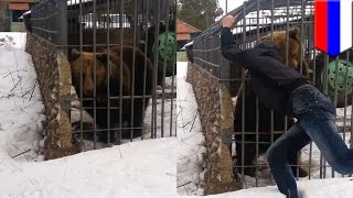 Video Bear attack video: idiot puts his arm in cage and bear bites it off in shocking footage - TomoNews MP3, 3GP, MP4, WEBM, AVI, FLV Juli 2017