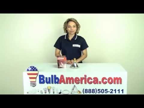 BulbAmerica.com Reviews the PLATINUM 90w 120v PAR38 Flood
