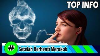 Download Video Inilah Yang Dialami tubuh setelah berhenti merokok MP3 3GP MP4