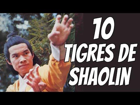Wu Tang Collection - 10 Tigres de Shaolin (English Subtitles)