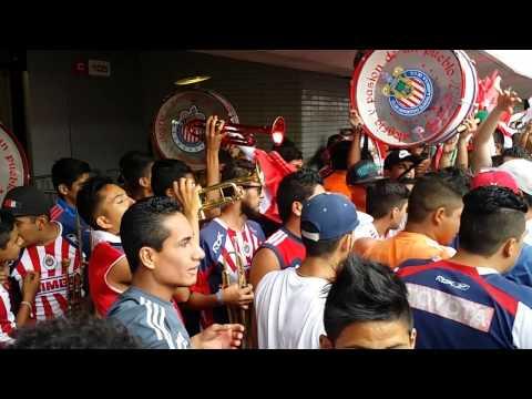 La Irreverente vs el América 2015 - Legión 1908 - Chivas Guadalajara