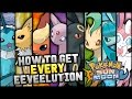 How To Get EVERY Eeveelution In Pokemon Sun And Moon