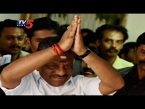 "Amma DMK | Panneerselvam To Launch New Party ""Amma DMK"""