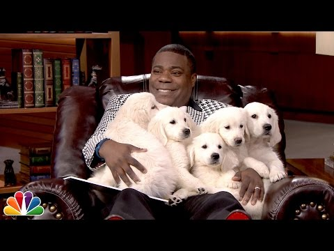 Pup Quiz with Tracy Morgan