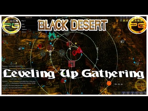 Black Desert Online | How To Level Up Gathering Quickly | Pietro Gaming