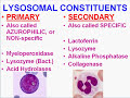 Medical Pathology channal