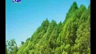 Thai Music Video
