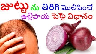 How To Make Onion Juice For Hair Growth Onion juice for hair Growth Health. benefits of onion for hair growth.  onion juice works like magic for hair . onion juice helps in hair regrowth , which prevents baldness and helps in hair growth . applying onion juice thrice in a week helps to  regrow hair within a very short period of time .juttu peragalante,juttu peragalante emi cheyali,juttu baga peragalante,juttu chitkalu,juttu in telugu,juttu nallabadataniki,juttu nallaga avvalante,juttu othuga peragalante,juttu ottuga peragadaniki,juttuperagadam,juttu peragadam ela,juttu peragadaniki chitkalu,juttu peragadaniki chitkalu telugulo,juttu peragadaniki oil,juttu peragadaniki telugu lo,juttu peragadaniki tips,juttu peragalante,juttu peragalante emi cheyali,juttu peragalante emi cheyali telugulo,juttu peragataniki,juttu raaluta nivarana - andariki ayurvedam,juttu ralakunda,juttu ralakunda chitkalu,juttu ralakunda em cheyali,juttu ralakunda tips,juttu ralakunda undalante,juttu ralakunda undalante emi cheyali,juttu raluta nivarana,juttu raluta nivarana - andariki ayurvedam,juttu ravadaniki,juttu vudadam thaggalante emi cheyali,juttu vudadam thaggalante emi cheyali juttu peragalante emi cheyali telugulo,Bald Spots, hair growth, hailoss, dandruff, mana health, hair treatment, home remedies, natural, cure, skin, effects, natural hair, baldness, ,onion juice baldness, onion juice benefits for hair, onion juice cure hair loss, onion juice for grey hair, onion juice for hair,onion juice for hair regrowth,onion juice for hair regrowth before and after in telugu,onion juice for male pattern baldness, onion juice for natural hair growth, onion juice hair growth results, onion juice in telugu, onion juice making, onion juice massage ,onion juice works like a magic for hairlike👍--share👫👫--comment✍✍✍ --and subscribe🔔🔔🔔 is free so subscribe us