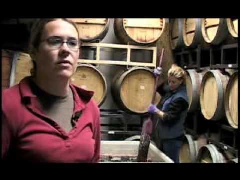Winery - Wine - Making Wine in Colorado