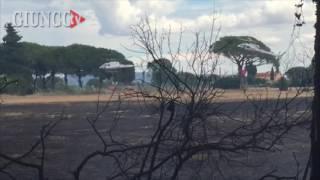 Principina a Mare Italy  city photos gallery : PRINCIPINA A MARE - Incendio in pineta. 2 elicotteri in azione