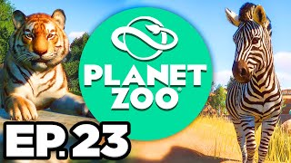 Planet Zoo Ep.23 - • CUTE BABY LIONS! •️ GOLD STAR ON CALDERA SAFARI PARK! (Gameplay / Let's Play)