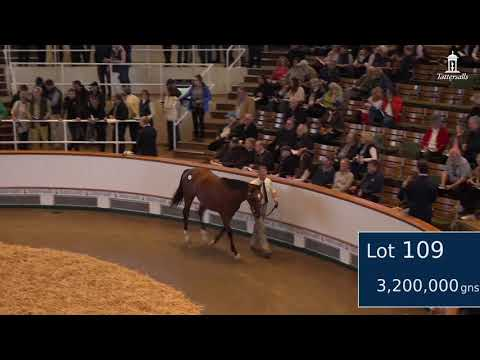 The second most expensive yearling sold in the world this year