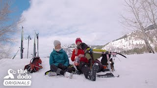Rescue Dog And Her Family Try Skiing For The Very First Time l The Dodo Destination: Firsts by The Dodo