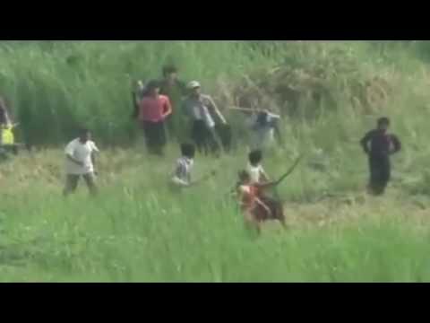 Etnis Rohingya Terus Dibantai, Sikap Indonesia Dipertanyakan