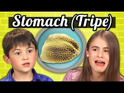 Kids React to Tasting Tripe Cow s Stomach for the First