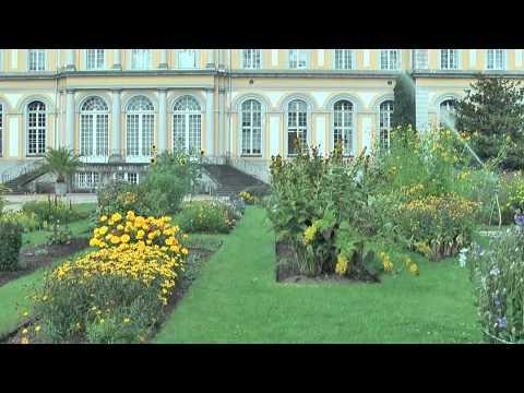 Botanische Gärten: Bonn (NRW) - Botanischer Garten Bonn im August 2012