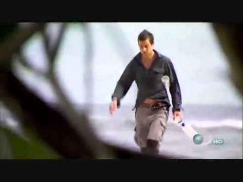 bear grylls - This is where Bear Grylls goes off to an Island. I don't own this. No fringe intended.