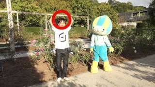 花フェスタ記念公園で幻のバラを探せ!編