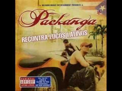 Tekst piosenki Pachanga - Sabro Son (Reggaeton) po polsku