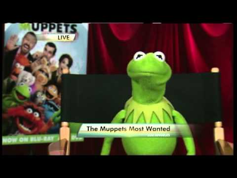 Kermit remembers Robin Williams