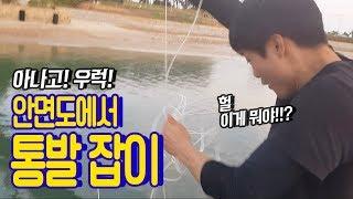 Video 안면도 바다에 통발을 던졌더니 엄청난 놈이 잡혔다??? catch sea eels with fish traps MP3, 3GP, MP4, WEBM, AVI, FLV November 2018