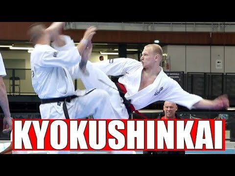 CHAMPIONNATS D'EUROPE DE KARATE KYOKUSHINKAI IKO À LYON