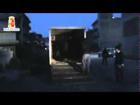 Gela, trovati due cavalli feriti L'ombra delle corse clandestine