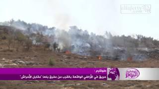 حريق في الأراضي الواقعة بالقرب من مفرق بلعا شرق طولكرم