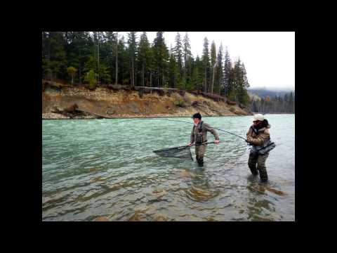 2013 CANADA Skeena River Steelhead Fly Fishing TEAL