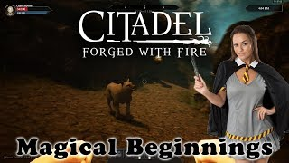 Let's start our journey to become a great Warlock in online sandbox role-playing game (RPG) Citadel: Forged with Fire.Citadel: Forged with Fire launches in Early Access (for Windows) on July 25th and can be found on Steam - http://store.steampowered.com/app/487120/Citadel_Forged_with_Fire/To keep up to date with ALL the Cryptic Hybrid things check out: - TWITTER: https://twitter.com/CrypticHybrid  - MINDS: https://www.minds.com/CrypticHybrid  - FACEBOOK: https://www.facebook.com/cryptichybrid/ PS Also don't forget to SUBSCRIBE - www.youtube.com/cryptichybrid