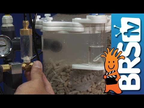 Set-up and Tune a Calcium Reactor | How To Tuesday